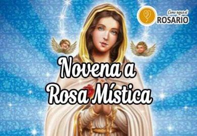 Novena a la Rosa Mística